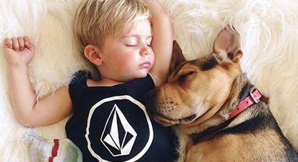 午睡时光 萌娃和狗狗的风骚睡姿