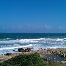 太平洋的风